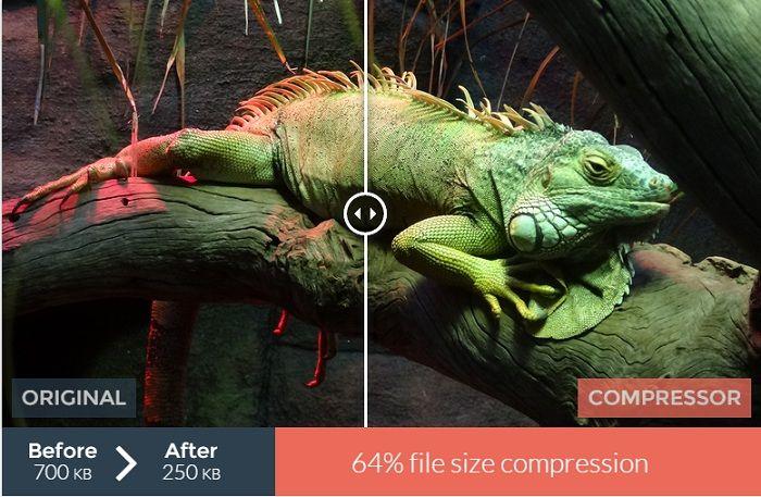 تحسين الصور لمحرك البحث